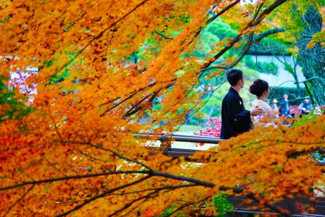 四季折々の景色が楽しめる!日本庭園がある東京の結婚式場4選